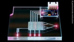 Image: A lab-on-a-chip; Copyright: panthermedia.net/luschen