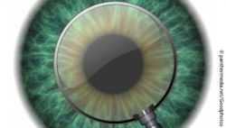 Image: green iris and pupil, enlarged by a magnifying glass; Copyright: panthermedia.net/Goodphotos