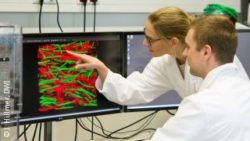 Image: Two scientists look at a screen which shows red and green dots; Copyright: J. Hillmer, DWI