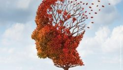 Image: a head shaped tree looses its leafes; Copyright: PantherMedia.net/Lightsource