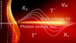 Image: graphic of nanolaser physics; Copyright: Graphic by Rhonda Hitchcock-Mast/ASU