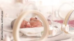 Image: Premature infant in a hospital bed; Copyright: panthermedia.net/Ondrooo