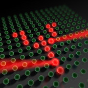 Photo: Single atoms in the lattice of light
