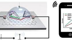Image: Illustration of graphene-based SNP detection chip wirelessly transmitting signal to a smartphone; Copyright: Lal et al.