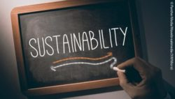 "Photo: A hand writes the word ""sustainability"" on a chalkboard; Copyright: PantherMedia / Wavebreakmedia (YAYMicro)"