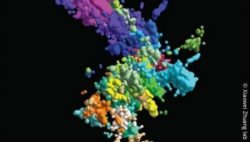 Image: many multicoloured bubbles that form a big cloud on black ground; Copyright: Xiaowei Zhuang lab