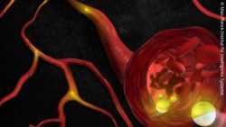 Image: Graph of the micro robot in a blood vessel; Copyright: Max Planck Institute for Intelligent Systems