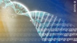 Image: DNA strand with repeated DNA codes in the foreground; Copyright: NHGRI
