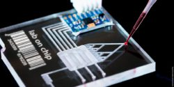 Photo: Microfluidic chip with pipette and red fluid