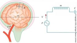 Image: graphic of a brain and an electric circuit;Copyright: Copyright 2020, Springer Nature Limited