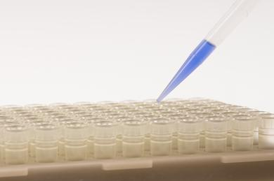 The so-called Tip-Trays with pipette tips by CyBioAG, Jena, are sterilized at Herotron (Photo: Herotron)