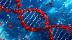 Image: a red DNA and blue background; Copyright: ASU