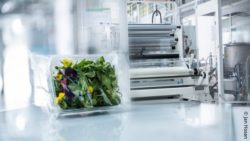 Image: Salad packaging and an industrial plastic packaging machine; Copyright: Jan Hosan