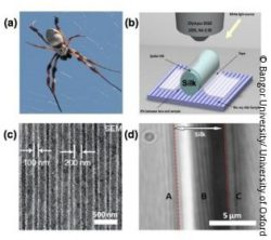 Image: Four different pictures: a spider, schematic drawing of the superlens, EM image of Blu-ray disk and  Clear magnified image of Blu-ray disk; Copyright: Bangor University/ University of Oxford
