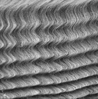 Photo: Buckled carbon nanotubes under compression