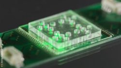Image: close-up of the chip; Copyright: S. Döring /Leibniz-IPHT