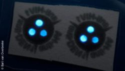 Image: This paper strip (extremely zoomed in) contains two copies of the test. The three glowing dots per test indicate that you can check on three different antibodies within one test; Copyright: Bar