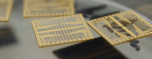 Photo: Golden bio chips