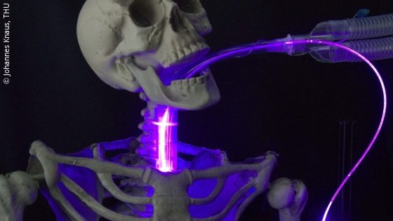 Image: a skeleton with a tube that glows purple; Copyright: Johannes Knaus/THU